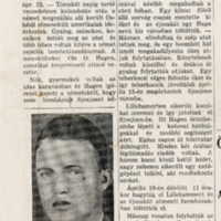 http://files.hungarianarchives.org/hungarianarchives/HUNGARIAN PAPERS/AHL_AMN/AHL_CONTR_AMN_Articles_015.jpg